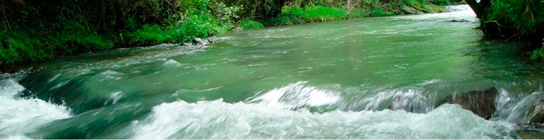 rio izurza